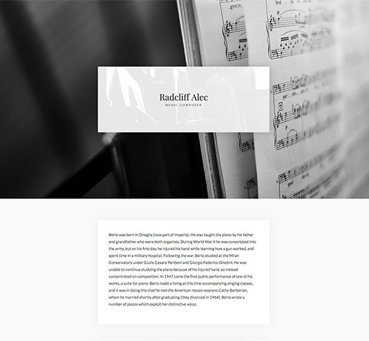 Cheap Website Design Service Website Themes Music