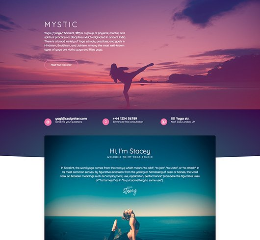 Cheap Website Design Service Website Themes Health & Fitness