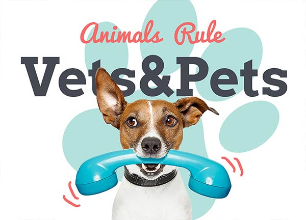 Pets Business Website