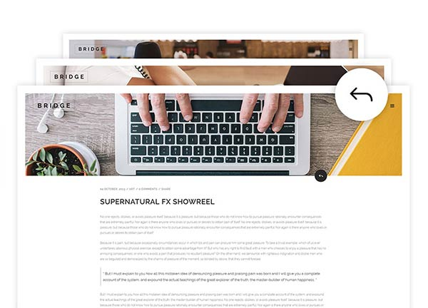 Blog Loop