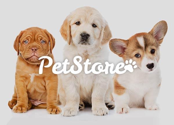 Animals Business Website