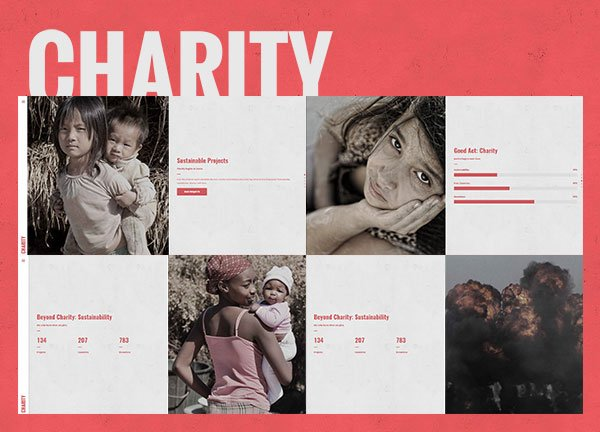Charity Business Website