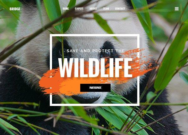 Wildlife Business Website