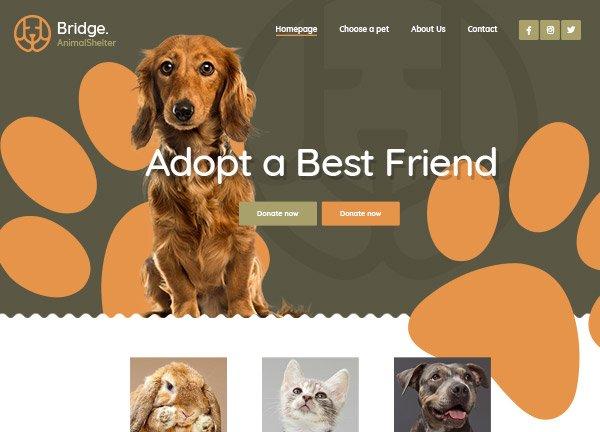 Animal Shelter Business Website